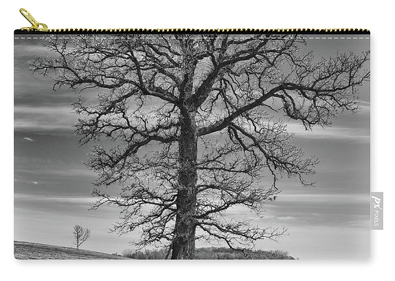 Forest Carry-all Pouch featuring the photograph Alone In Minnesota by Guy Whiteley