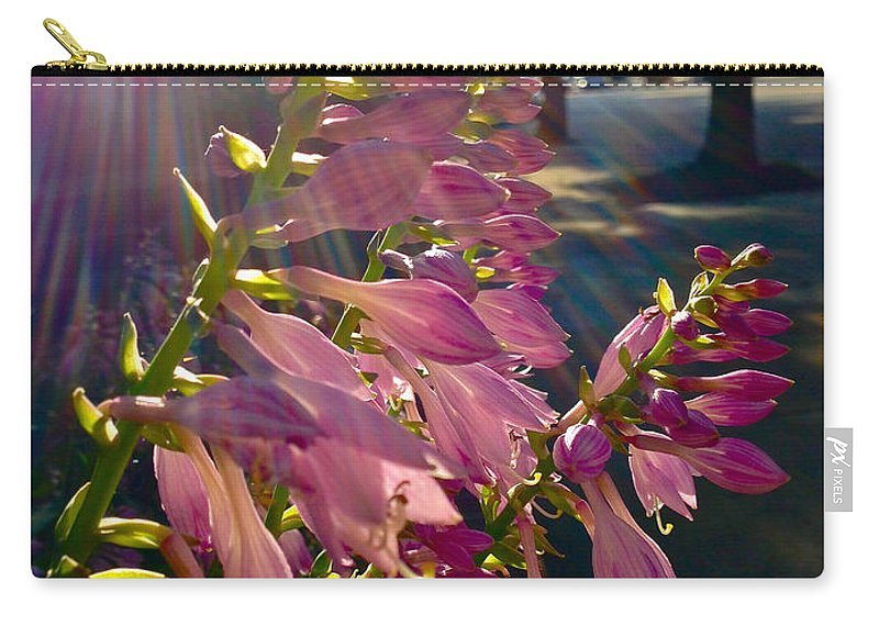 Flower Carry-all Pouch featuring the photograph Along The Sidewalk by Lexi Heft