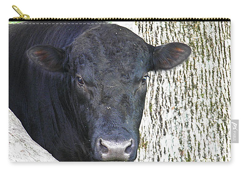 Black Carry-all Pouch featuring the photograph Alot Of Bull by Nick Kirby