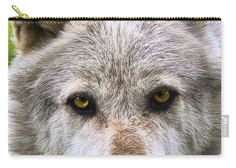 Animal Carry-all Pouch featuring the photograph Alpha Male Wolf by Marcia Colelli