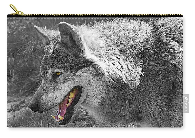 Grey Wolf Carry-all Pouch featuring the photograph Alpha Male Wolf - You Look Tasty 2 by Gill Billington