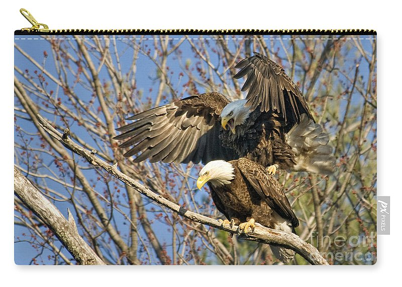 Eagles Carry-all Pouch featuring the photograph Always Yelling by Claudia Kuhn