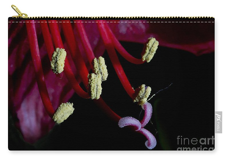 Leaves Carry-all Pouch featuring the photograph Amarilla Flower  #9398 by J L Woody Wooden