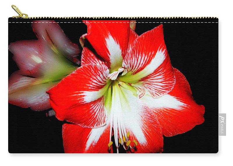 Flower Carry-all Pouch featuring the digital art Amaryllis by Lizi Beard-Ward