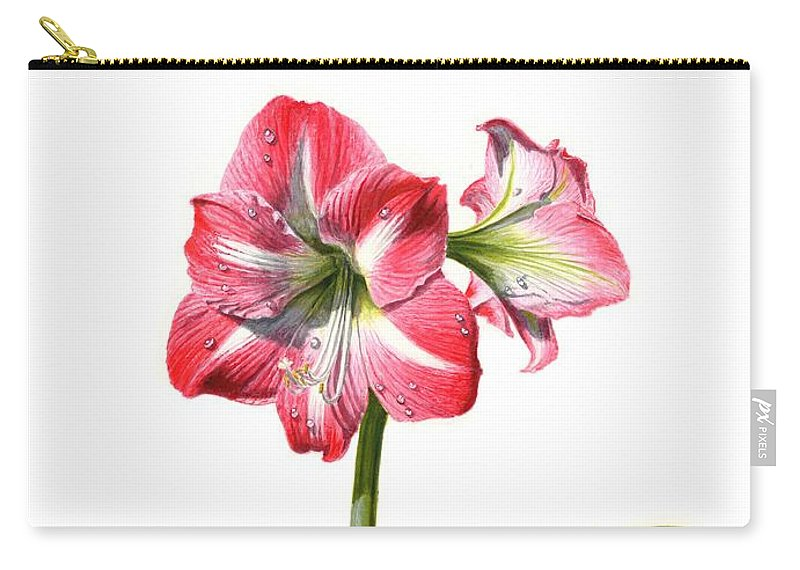 Amaryllis Carry-all Pouch featuring the painting Amaryllis by Richard Harpum