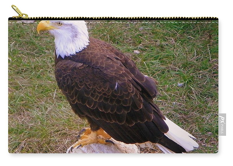 American Eagle Carry-all Pouch featuring the photograph American Bald Eagle 1 by Sheri McLeroy