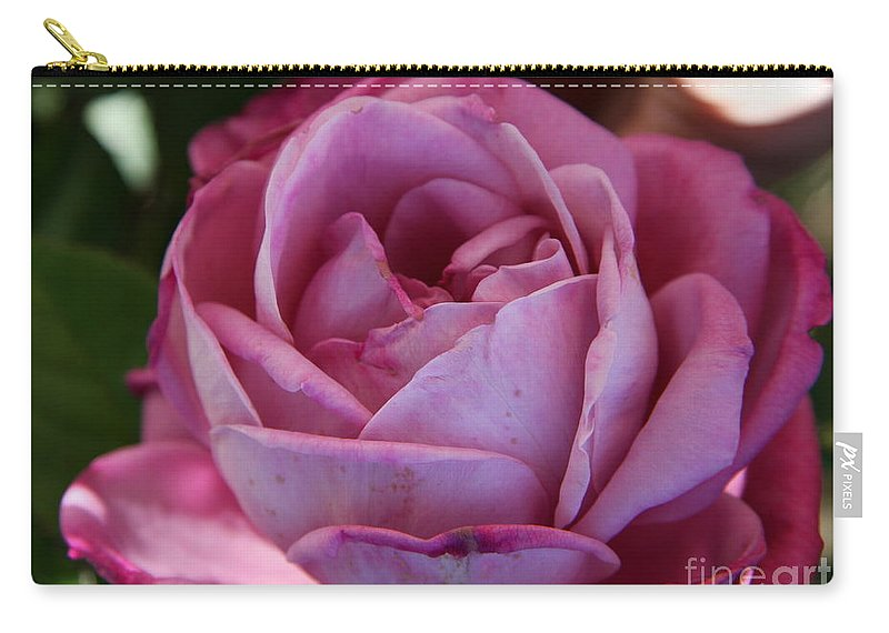 Rose Carry-all Pouch featuring the photograph American Beauty IIi by Christiane Schulze Art And Photography