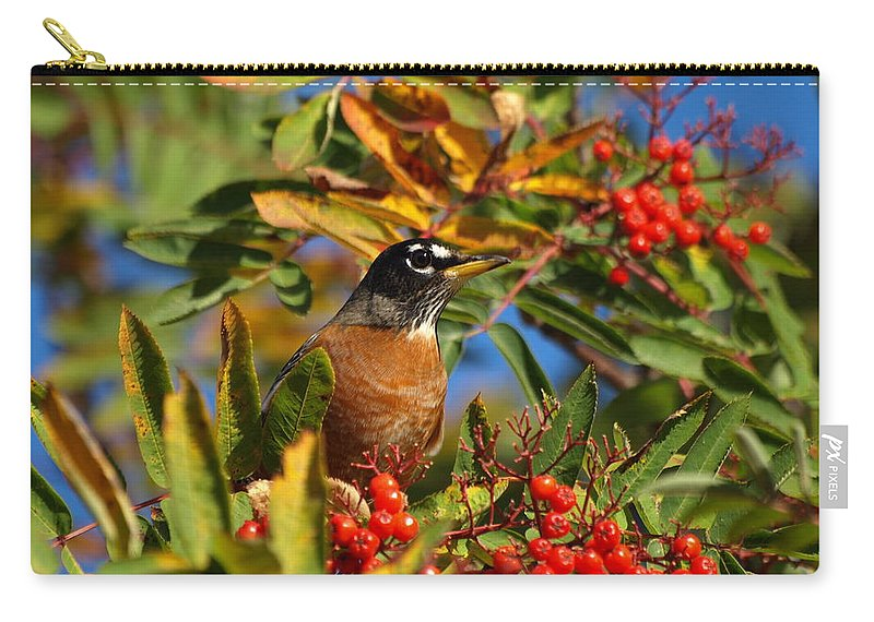 Peterson Nature Photography Carry-all Pouch featuring the photograph American Robin by James Peterson