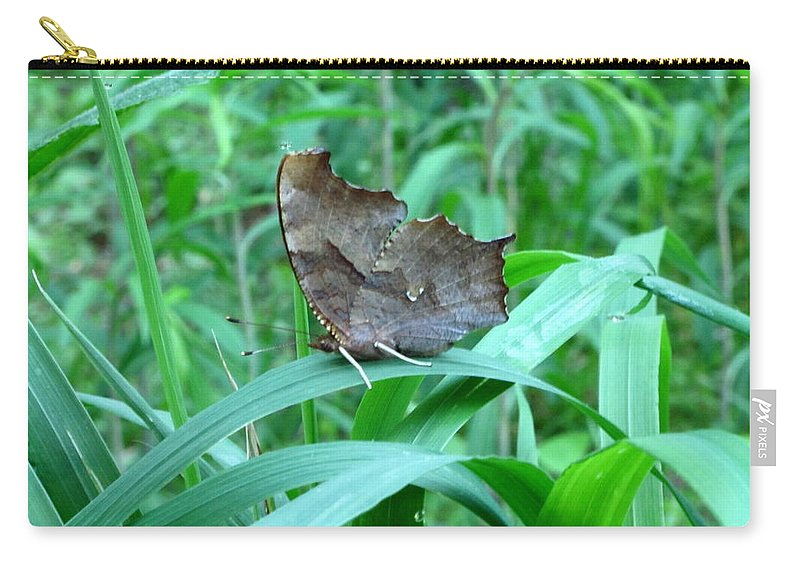 American Snout Butterfly Images Butterflies Of Maryland Images Butterfly Diversity American Snout Photograph Prints Forest Ecostystem Biodiversity Forest Butterfly Prints Leaf Winged Butterfly Nature Bowelys Quarters Maryland Butterfly Pictures Carry-all Pouch featuring the photograph American Snout Butterfly by Joshua Bales