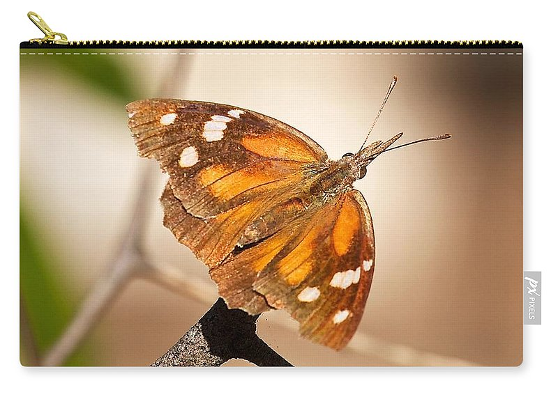 American Snout Butterfly Carry-all Pouch featuring the photograph American Snout Butterfly by Stuart Litoff