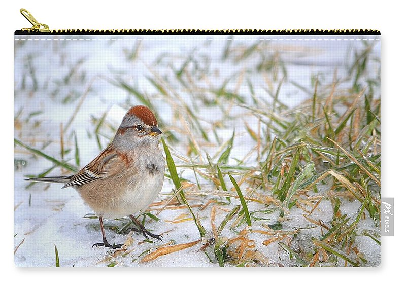 Bird Carry-all Pouch featuring the photograph American Tree Sparrow by Deena Stoddard