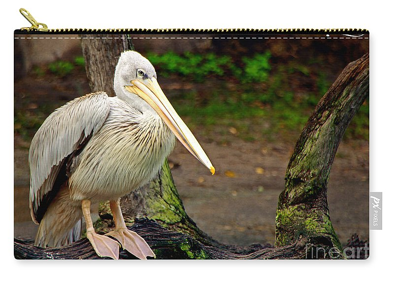 Pelecanus Carry-all Pouch featuring the photograph American White Pelican by Rebecca Morgan