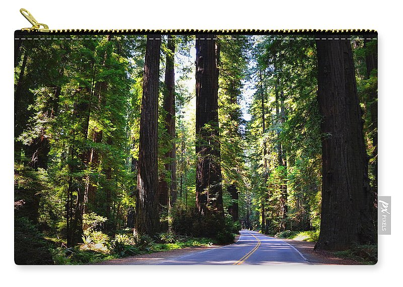 Majestic Carry-all Pouch featuring the photograph Among The Giants by Michelle Calkins