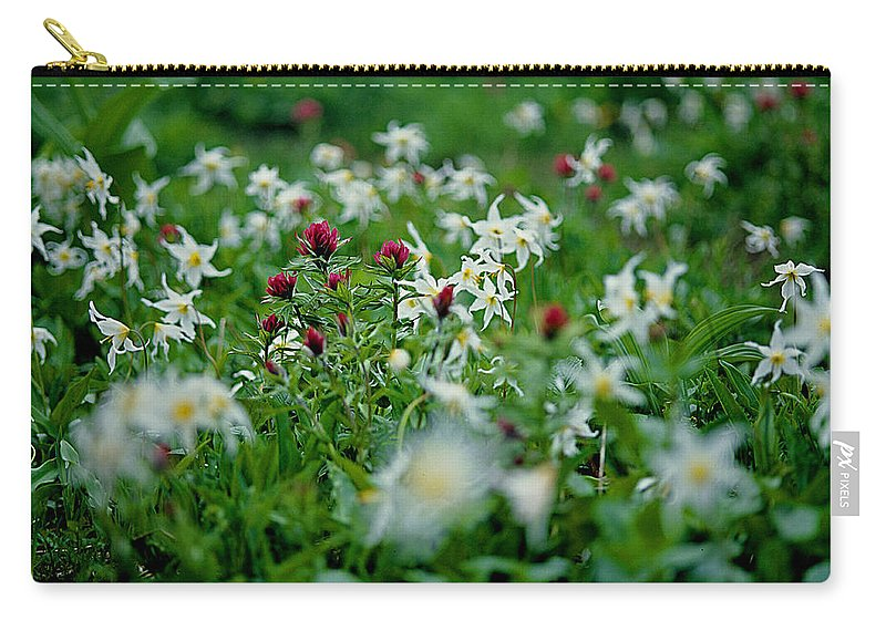 Paintbrush Carry-all Pouch featuring the photograph Among The Lillies by Eric Albright