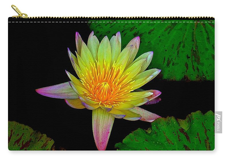 Water Carry-all Pouch featuring the photograph Among The Lily Pads by Tim G Ross