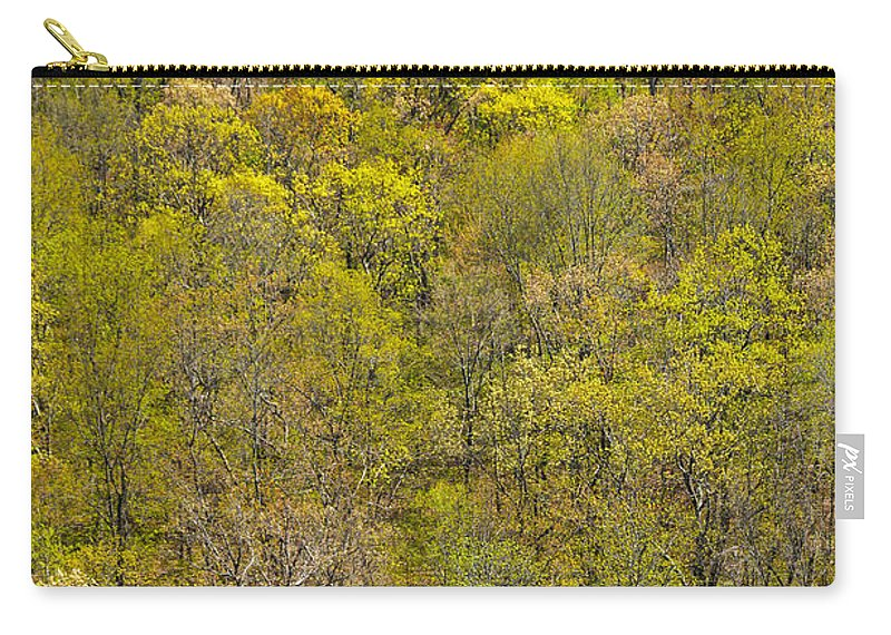 Trees Carry-all Pouch featuring the photograph Among The Trees by Karol Livote