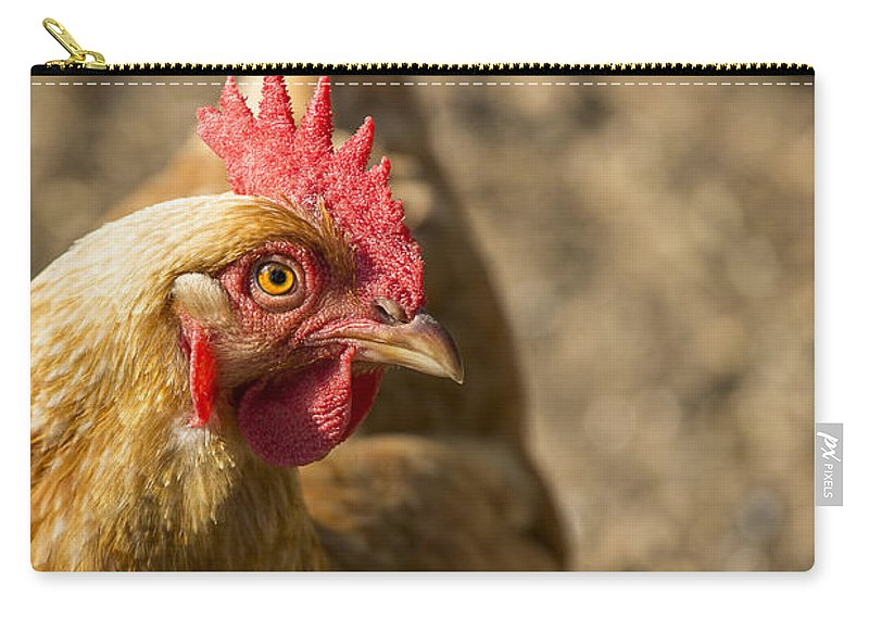 Chicken Carry-all Pouch featuring the photograph An Eye On You by Caitlyn Grasso