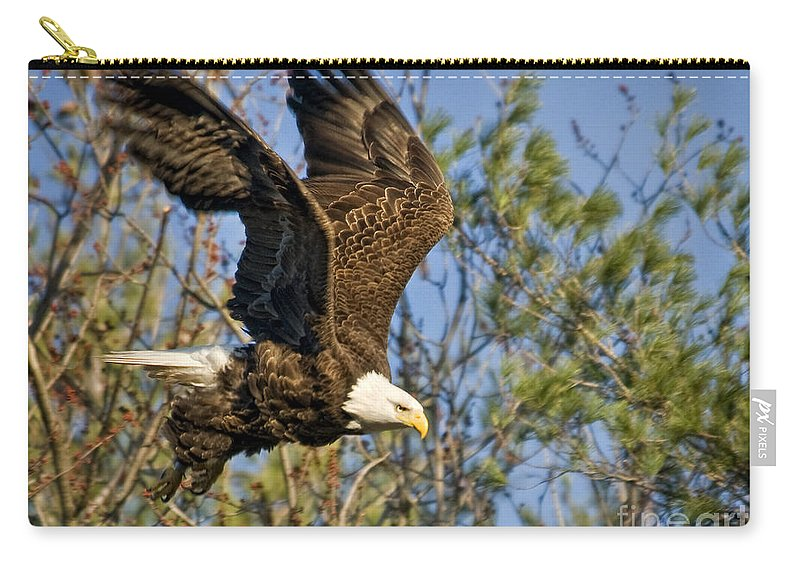 Eagles Carry-all Pouch featuring the photograph And He Is Off by Claudia Kuhn