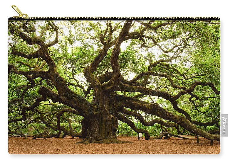 Tree Carry-all Pouch featuring the photograph Angel Oak Tree 2009 by Louis Dallara