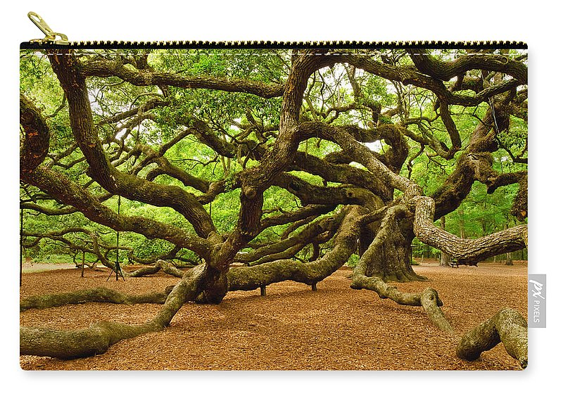 Nature Carry-all Pouch featuring the photograph Angel Oak Tree Branches by Louis Dallara