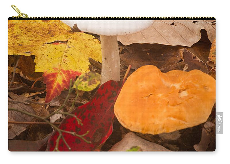 Fungi Carry-all Pouch featuring the photograph Angel White Mushroom 4 by Douglas Barnett