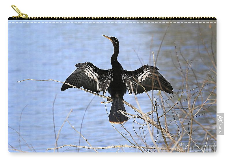 Anhinga Carry-all Pouch featuring the photograph Anhinga Over Blue Water by Carol Groenen