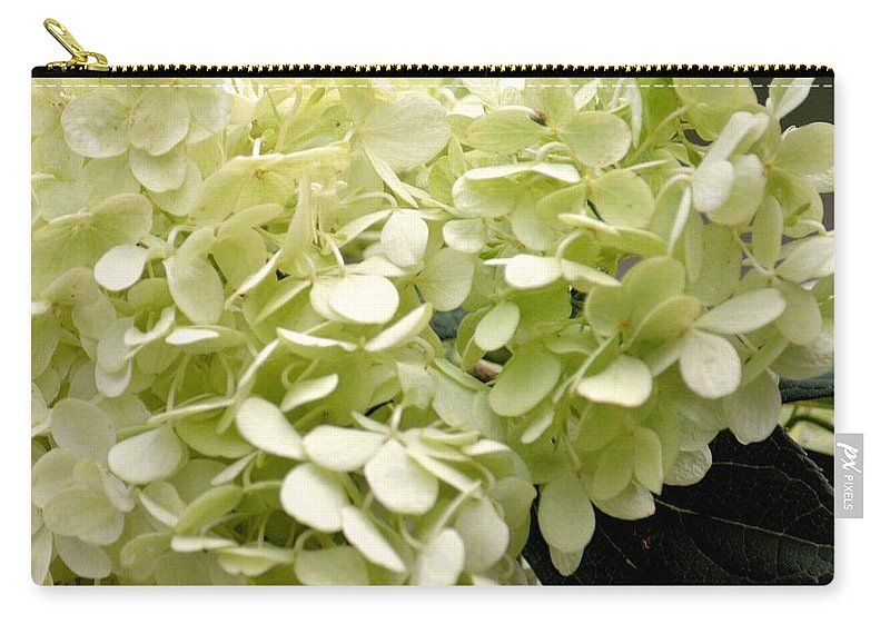 Annabella Carry-all Pouch featuring the photograph Annabelle by Maria Urso