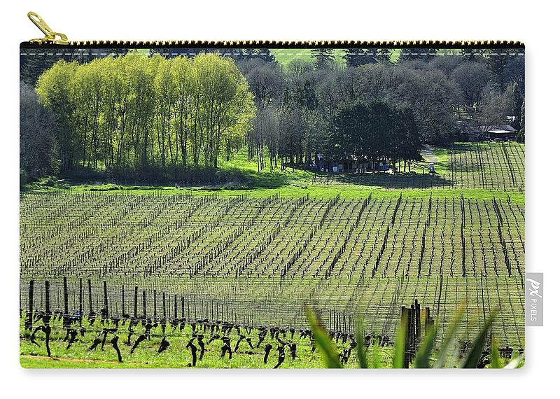 Anne Carry-all Pouch featuring the photograph Anne Amie Vineyard Lines 23093 by Jerry Sodorff