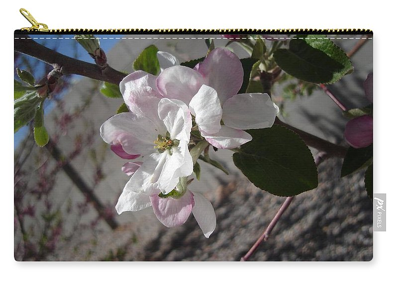 Flowers Carry-all Pouch featuring the photograph Apple Blossoms 3 by Lovina Wright