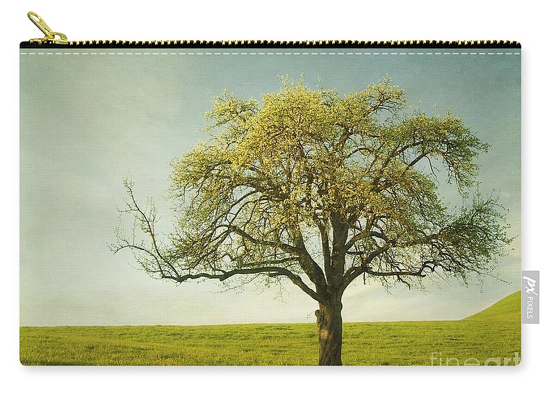 Appletree Carry-all Pouch featuring the photograph Appletree by Priska Wettstein