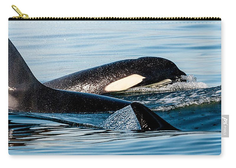 Orca Carry-all Pouch featuring the photograph Aquatic Immersion by Roxy Hurtubise