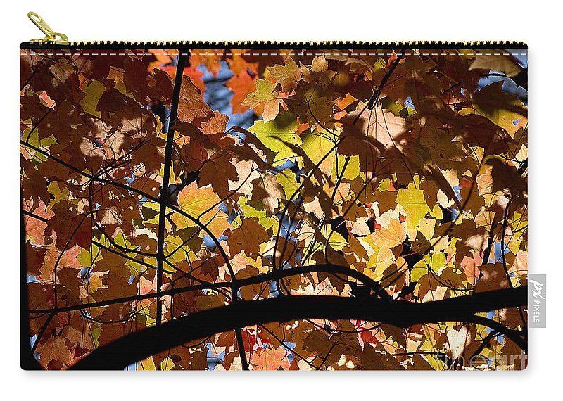 Arboretum Carry-all Pouch featuring the photograph Arboretum Fall by Steven Ralser
