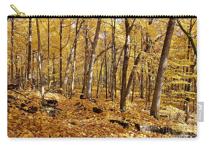 Aboretum Carry-all Pouch featuring the photograph Arboretum Trail by Steven Ralser
