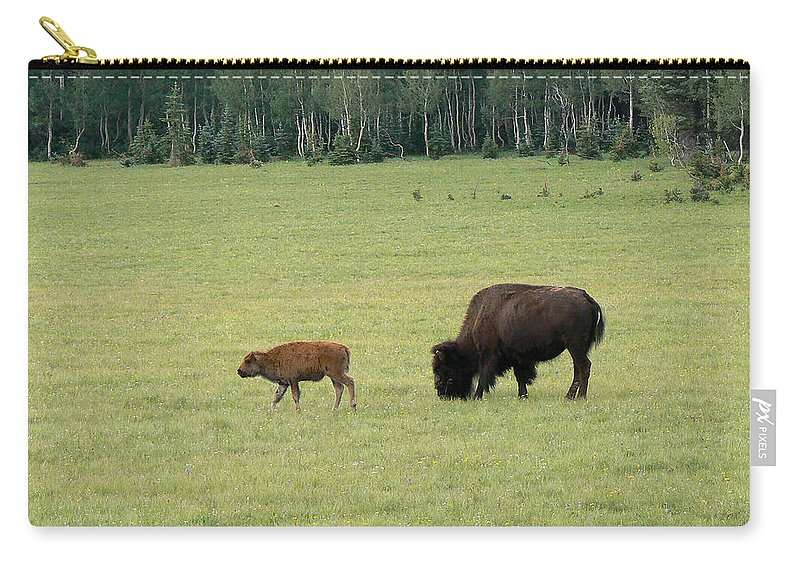 Bison Carry-all Pouch featuring the photograph Arizona Bison by Laurel Powell