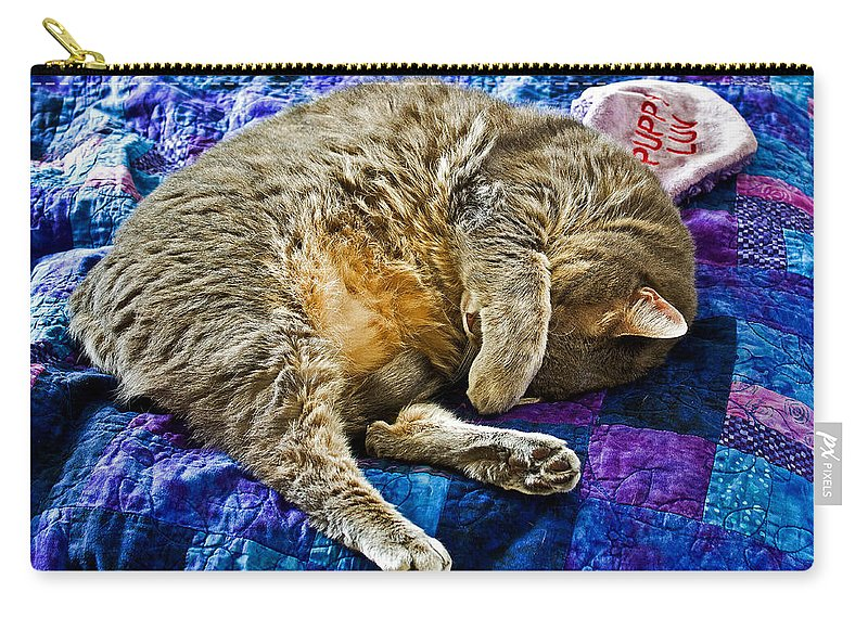 Cat Carry-all Pouch featuring the photograph Cat Nap by Tim Buisman