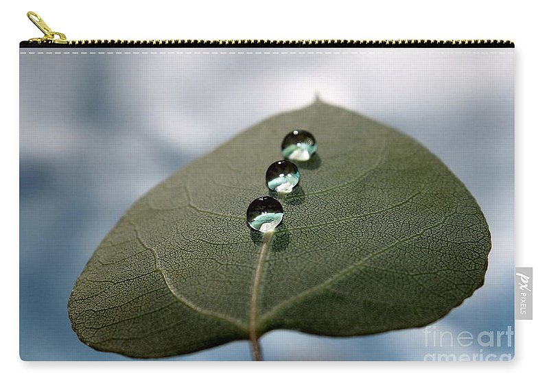 Green Leaf Carry-all Pouch featuring the photograph Art Of Balance by Krissy Katsimbras
