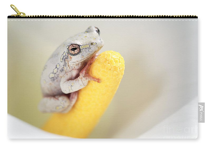 Frog Carry-all Pouch featuring the photograph Arum Lily Frog by Neil Overy