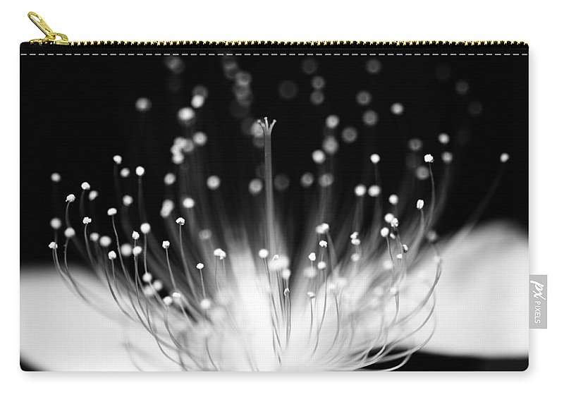 Black Background Carry-all Pouch featuring the photograph As Flame by Char