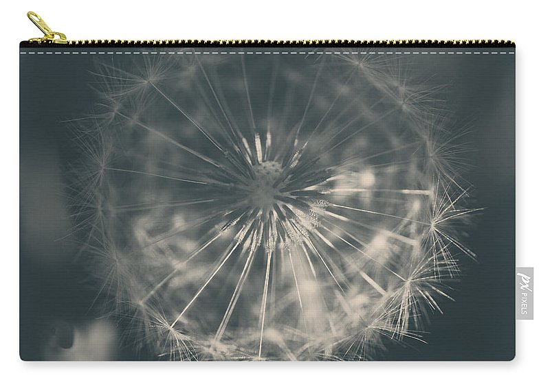 Dandelions Carry-all Pouch featuring the photograph As Long As The Sun Still Shines by Laurie Search