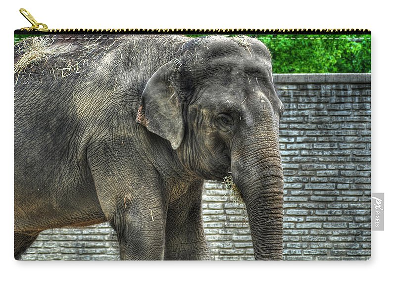 Elephant Carry-all Pouch featuring the photograph Asian Elephant 0a by Michael Frank Jr