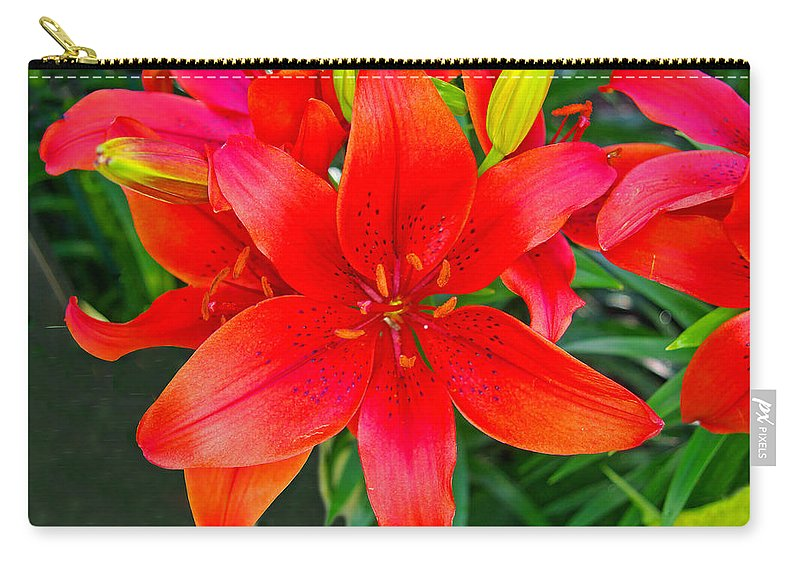 Lily Carry-all Pouch featuring the photograph Asiatic Hybrid Lily by Rich Walter