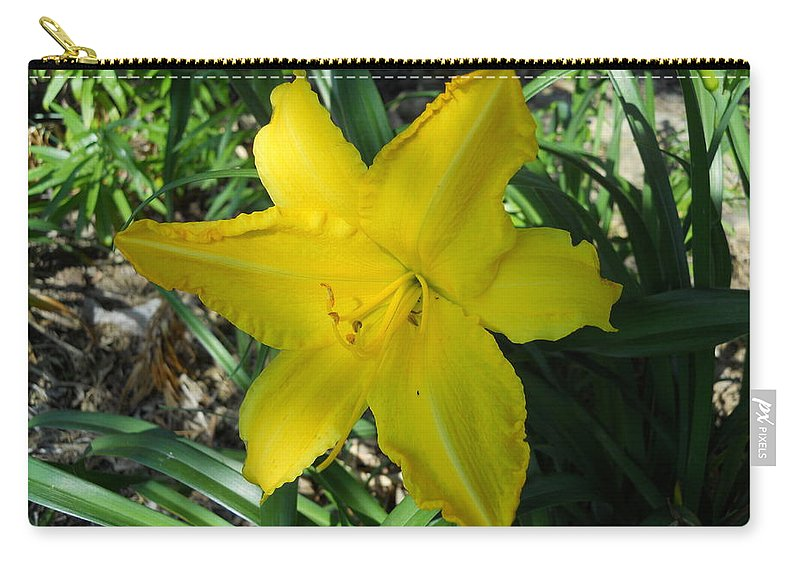 Flowers Carry-all Pouch featuring the photograph Asiatic Lily by Coleen Harty