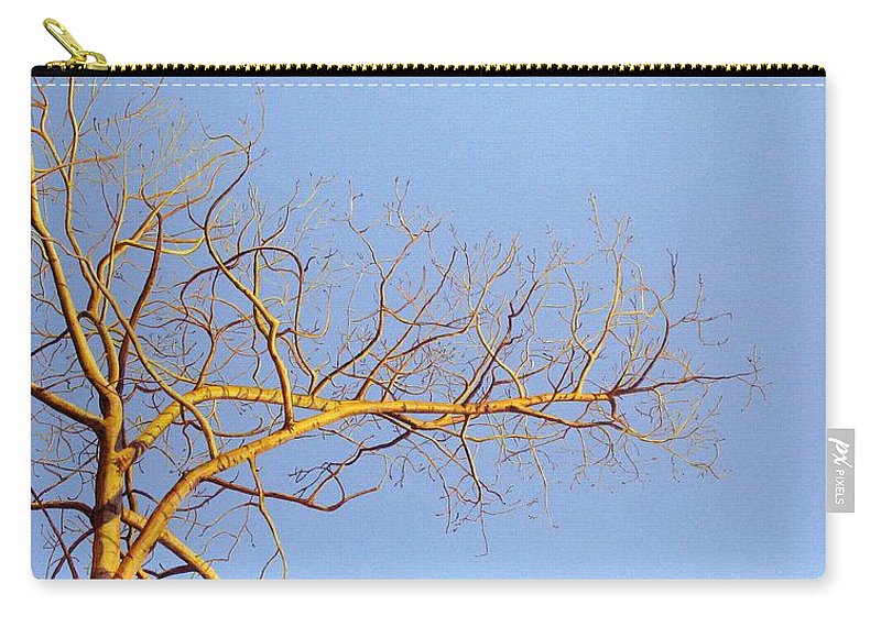 Aspen Painting Carry-all Pouch featuring the painting Aspen In The Autumn Sun by Elaine Booth-Kallweit