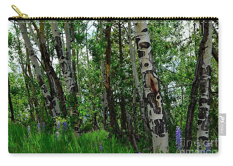 Trees Carry-all Pouch featuring the photograph Aspen Trees by Crystal Miller