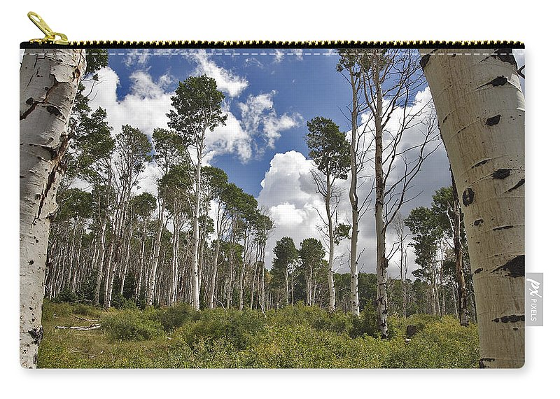 3scape Carry-all Pouch featuring the photograph Aspen Grove by Adam Romanowicz