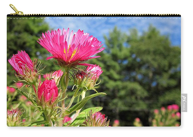 Asters Carry-all Pouch featuring the photograph Asters by MTBobbins Photography