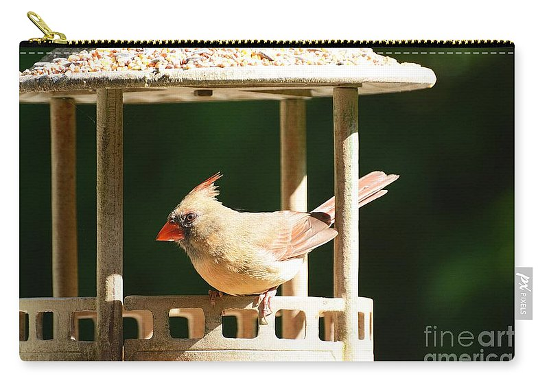 Cardinal Carry-all Pouch featuring the photograph At My Birdfeeder by Cindy Manero
