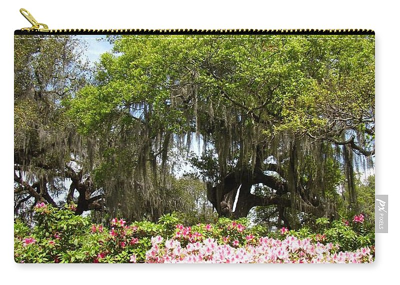 Landscape Carry-all Pouch featuring the photograph At The Park by Beth Vincent