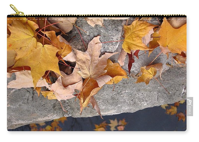 Leaf Carry-all Pouch featuring the photograph At Water's Edge by Ann Horn
