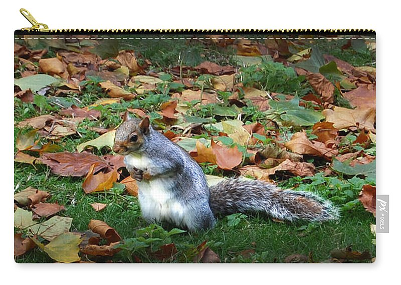 Squirrel Carry-all Pouch featuring the digital art Attentive Squirrel by Gina Dsgn
